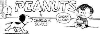 peanuts03
